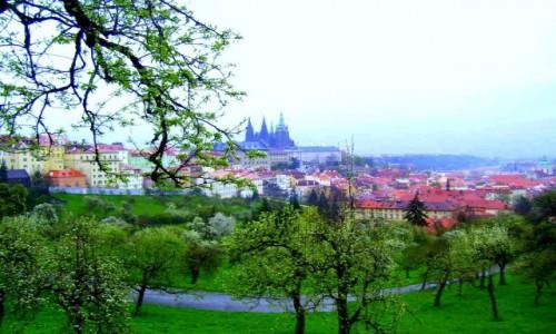 Zdjecie CZECHY / Czechy Środkowe / Praga / Wiosenna Praga