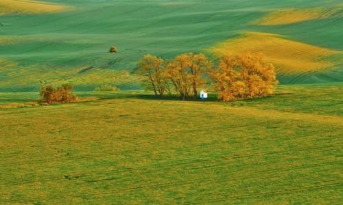 Zdjęcie CZECHY / Południowe Morawy / Strazovice / Kapliczka Św Barbary