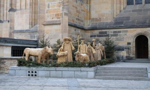 Zdjecie CZECHY / - / Szopka-Katedra praska / Radosnych Swiat Bozego Narodzenia