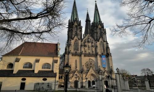 Zdjecie CZECHY / Morawy / Ołomuniec / Katedra św. Wacława