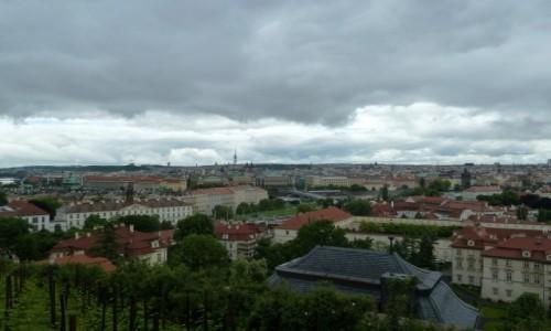 Zdjecie CZECHY / stolica / Praga / Praga