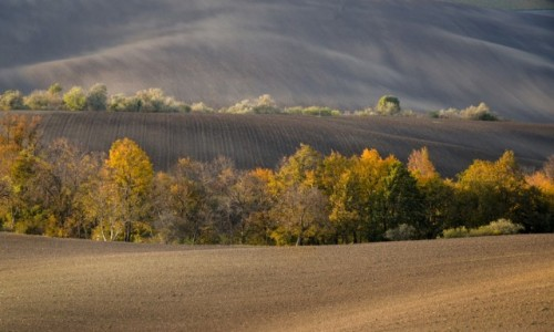 CZECHY / Południowe Morawy / Vlnky / jesień...