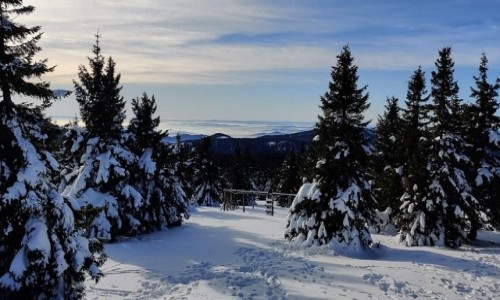Zdjecie CZECHY /  kraj Morawsko- Śląski  /  Mala Moravka, okolice / Widok na góry