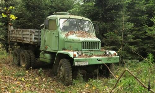 Zdjecie CZECHY / Czeska Swajcaria / Edmundova / zapomniany w lesie
