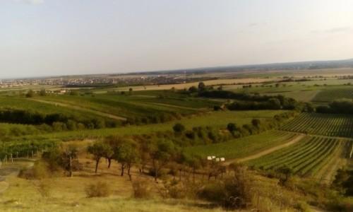 CZECHY / Morawy Południowe / Morawy Południowe / Krajobraz Moraw Południowych