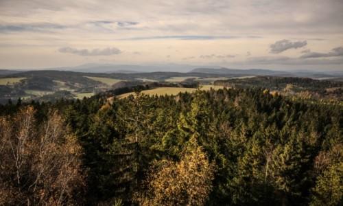 CZECHY / płn.-wsch. Czechy / Adrszpasko-Teplickie Skały / Panorama z wieży widokowej.
