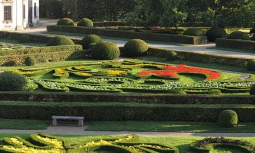 Zdjecie CZECHY / Morawy / Kromwriż / Kromeriż, ogród kwiatowy