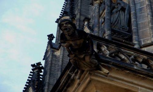 Zdjecie CZECHY / brak / Katedra św. Wita - Praga / maszkarony