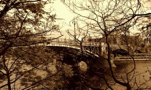 Zdjęcie CZECHY / brak / Praga / most