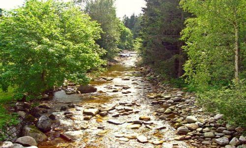Zdjecie CZECHY / brak / Harrachov  / Rdzawy strumień