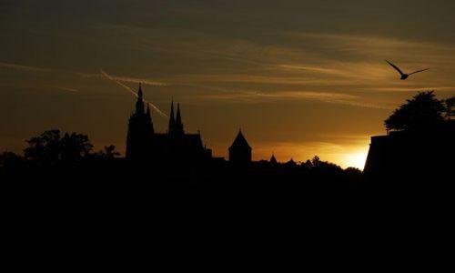 Zdjecie CZECHY / brak / Katedra św. Wita / Widok na katedrę św. Wita o zachodzie słońca