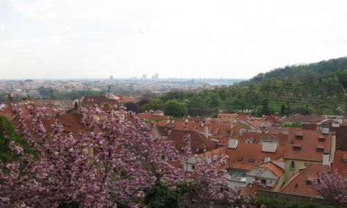 CZECHY / Praga / Praga / Konkurs- wiosenna Praga