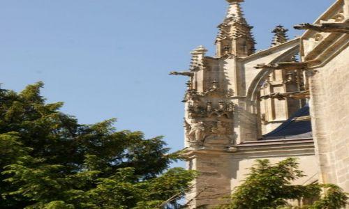 Zdjęcie CZECHY / Kutna Hora / Kościół św. Barbary / Detale