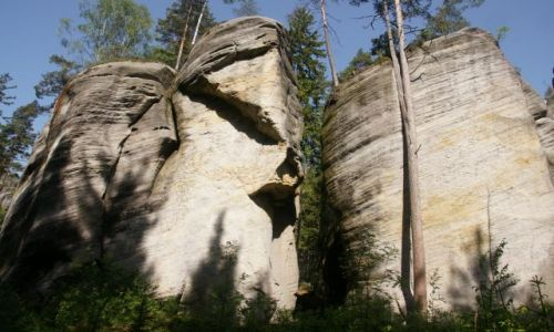 Zdjęcie CZECHY / Skalne miasto / Adrszpaskie Skały / Siła natury