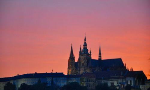 Zdjecie CZECHY / - / Praga / To właśnie jest Praha