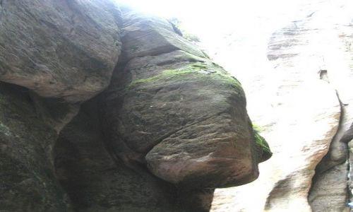 Zdjęcie CZECHY / Hradecki Kraj / Adrspach / skały maja różne kształty...