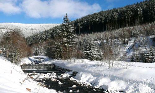 Zdjecie CZECHY / Karkonosze / droga na Śnieżkę / okolice Pecu