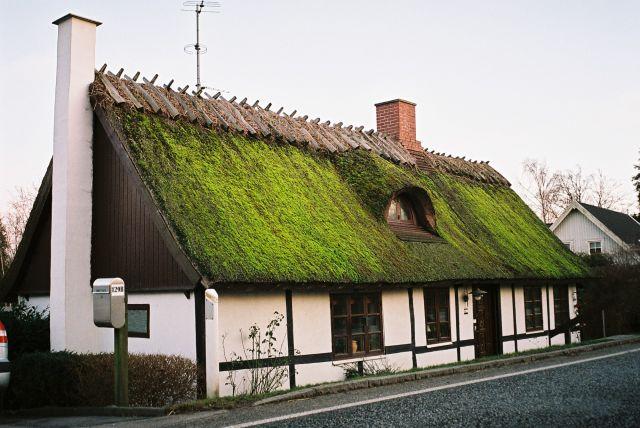 Zdj�cia: Wschodnia Dania, Wschodnia Dania, DOMEK, DANIA