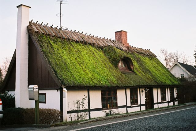 Zdjęcia: Wschodnia Dania, Wschodnia Dania, DOMEK, DANIA