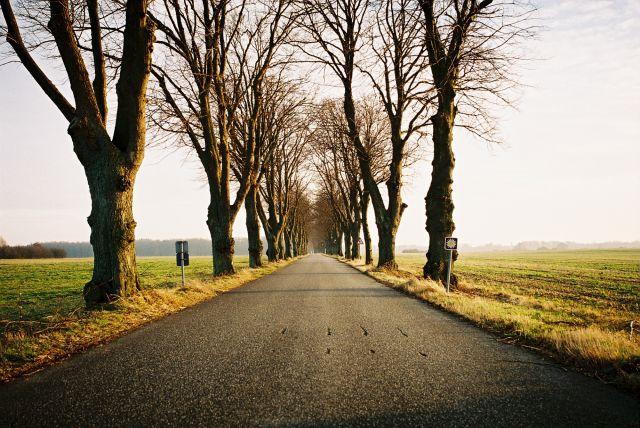 Zdjęcia: Wschodnia Dania, Wschodnia Dania, DROGA, DANIA