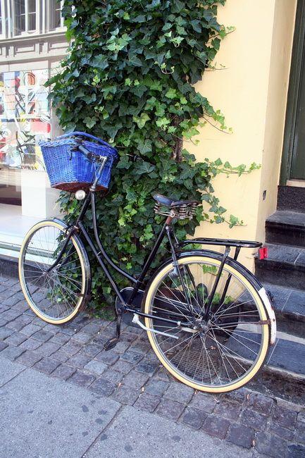 Zdjęcia: Kopenhaga, Duńska damka, DANIA