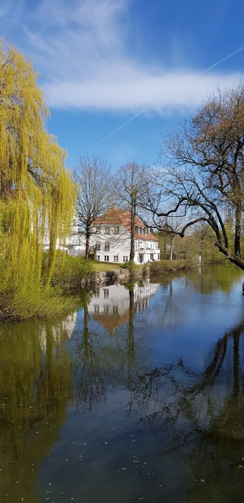 Zdjęcia: Most w Odensee, Miasto Odensee, Wiosna na wierzbie, DANIA