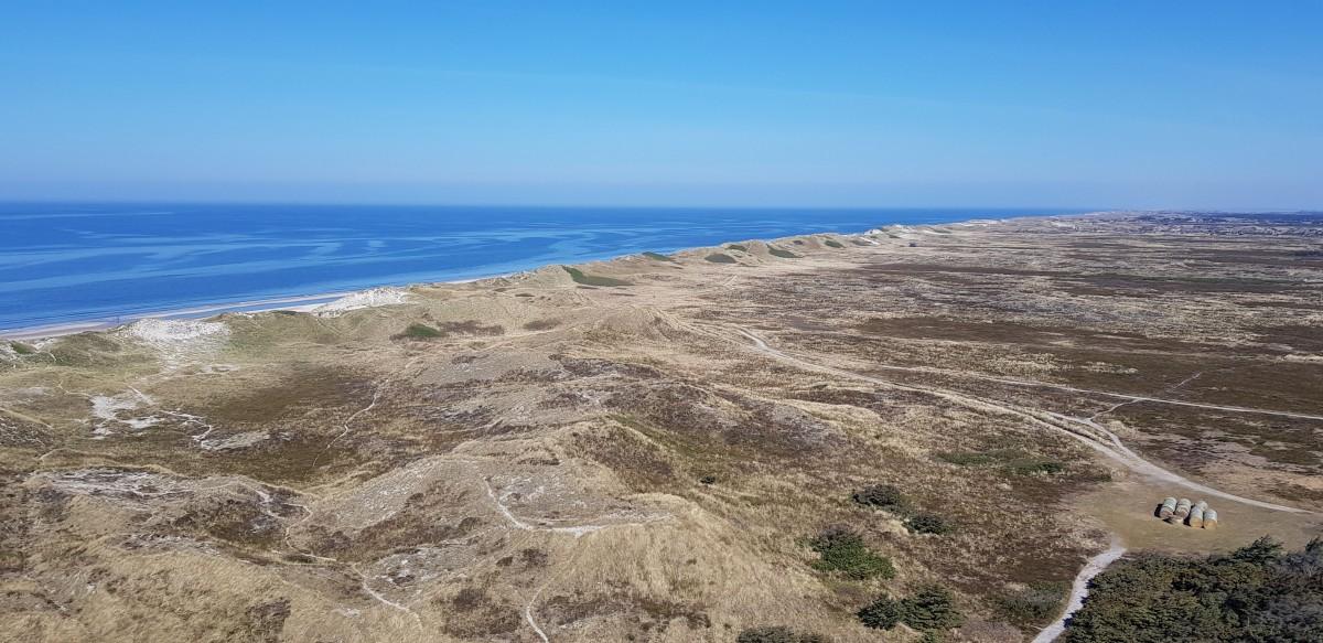 Zdjęcia: Widok z Latarni Morskiej  Lyngvig, Środkowa Jutlandia , Na Zachodnim Wybrzeżu , DANIA