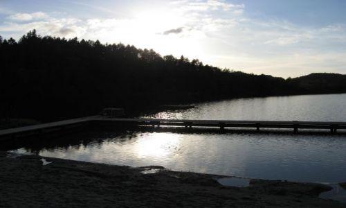 Zdjęcie DANIA / Jutlandia Środkowa / Bryrup / Jezioro