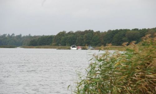 Zdjecie DANIA / Jutlandia / Silkeborg / Poszukiwanie je