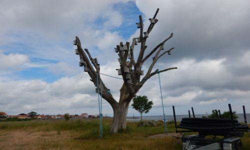 Zdjęcie DANIA / Bornholm. / Listed. / Na Bornholmie.