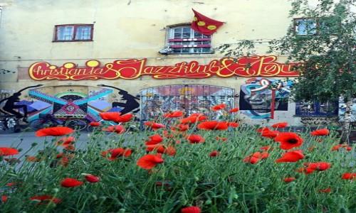 DANIA / Kopenhaga / Christiania, dzielnica półautonomiczna / Makowy świat