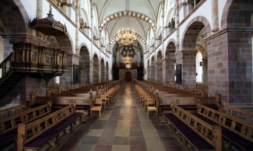 Zdjęcie DANIA / Ribe / Katedra Najświętszej Maryi Panny / Nawa główna, organy