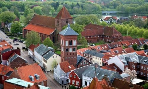 Zdjecie DANIA / Ribe / Katedra Najświętszej Maryi Panny / Kościół i klasztor św. Katarzyny (w centrum)