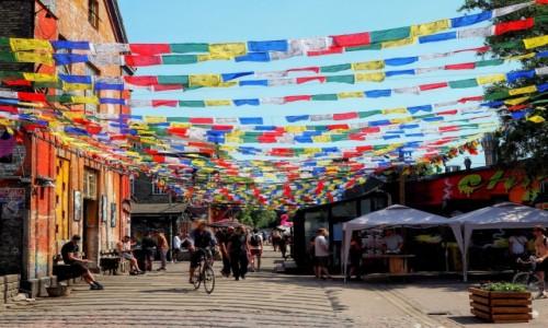 Zdjecie DANIA / Kopenhaga / Christianshavn / Christiania