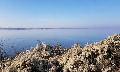 Zdjęcie DANIA / Dania południowa / Zatoka Kalo Vig / Z samego rana