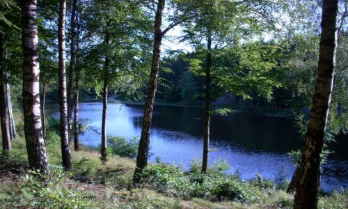 DANIA / Bornholm / Ronne / Leśne jezioro.