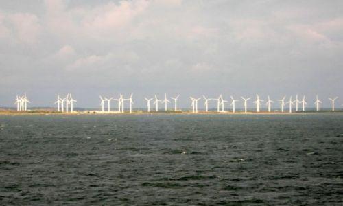 Zdjęcie DANIA / Dania / pomiędzy Niemcami a Danią... / wietrzni robotnicy