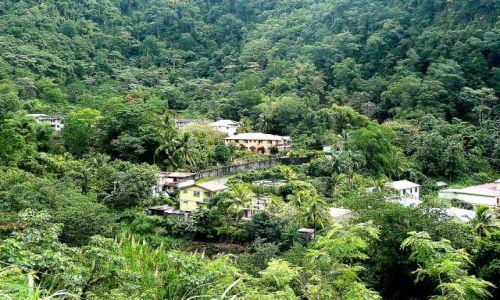 Zdjęcie DOMINIKA / east coast / rainforest / Wioska w dolinie