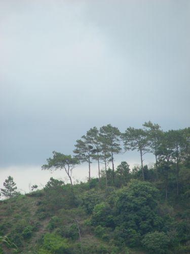 Zdjęcia: region Jarabacoa znany z hodowli koni, u zbiegu rzek, DOMINIKANA