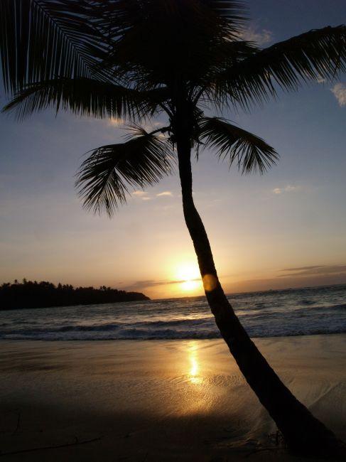 Zdjęcia: Dominikana, Plaża o zachodzie słońca, DOMINIKANA