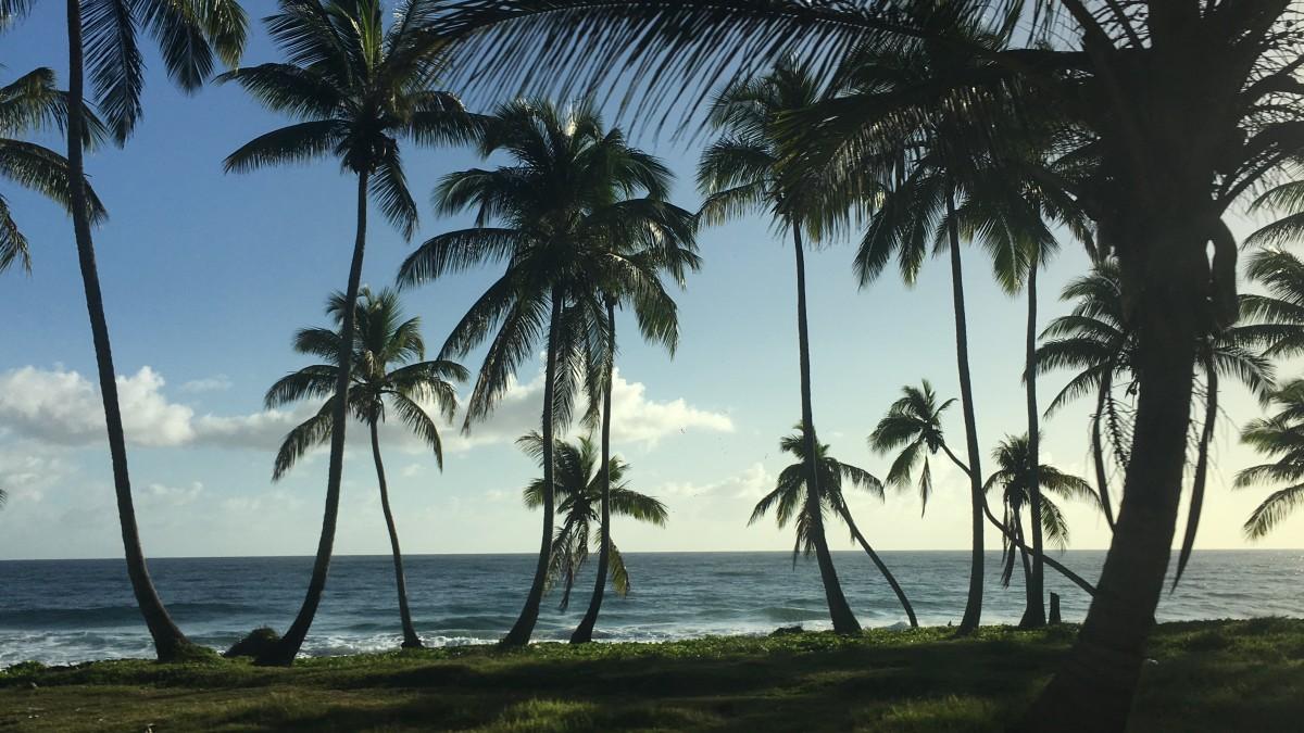Zdjęcia: Półwysep Samana , Półwysep Samana , W drodze na Samana , DOMINIKANA