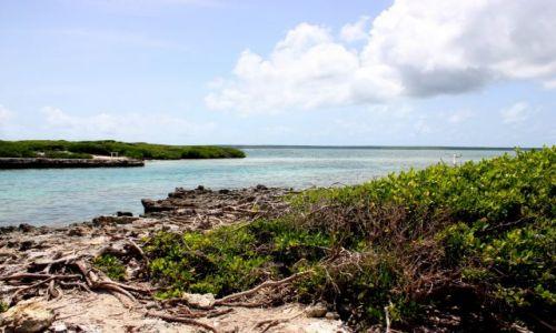 Zdjęcie DOMINIKANA / Bayahibe / Bayahibe / Wyspa Catalinita
