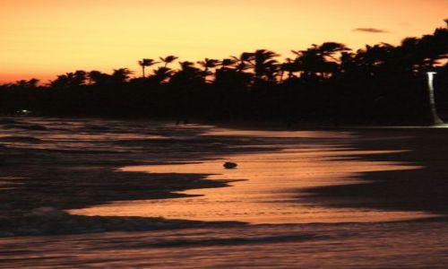 Zdjecie DOMINIKANA / - / Punta Cana / wschód słońca