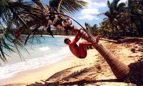 Zdjecie DOMINIKANA / SAMANA / Backardi Beach / Na drodze ewolucji !!!