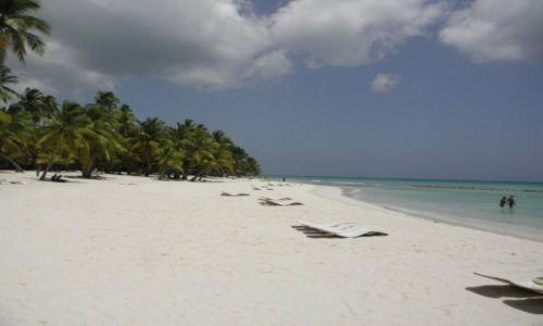 Zdjecie DOMINIKANA / punta cana / bavaro beach / do okoła