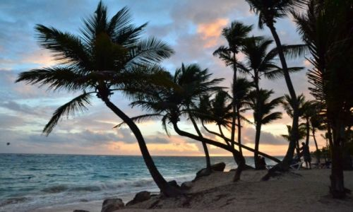 Zdjęcie DOMINIKANA / Punta Cana / Plaża Bavaro / wschód słońca