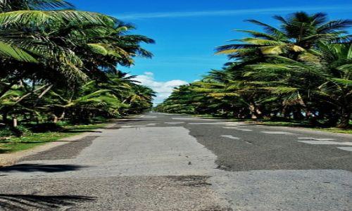 Zdjęcie DOMINIKANA / Gaspar Hernandez / Gaspar Hernandez / palm avenue