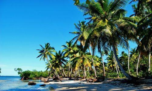 Zdjęcie DOMINIKANA / Las Terenas / Las Terenas / realy wild beach