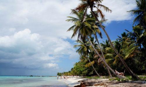 Zdjęcie DOMINIKANA / płd-wsch Dominikany / Wyspa Saona / Na wyspie