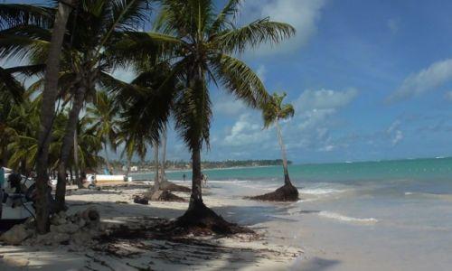 Zdjecie DOMINIKANA / plażą / wybrzeże / Bavaro